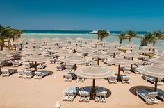 Enjoy cheap winter deals that bring down your overall travel costs with the winter sun holidays 2017 offered by Budget Holiday, Cheap Holiday, Holiday Deals, Beach Holiday, Winter Sun Holidays, Holidays 2017, Cheap Beach Vacations, Crystal Clear Water