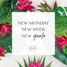 Monday, we can do this. ♀️  #monday #goals #wegotthis #newday #newweek #newstart #bossbabe #womeninbusiness