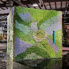 Living Succulent House at San Francisco Flower and Garden Show by Kelley Macdonald, via Flickr