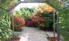 Un jardín con Feng Shui #fengshui #paisajismo #viverospeña
