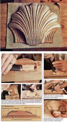 Carving Scallop Shell - Wood Carving Patterns and Techniques | WoodArchivist.com