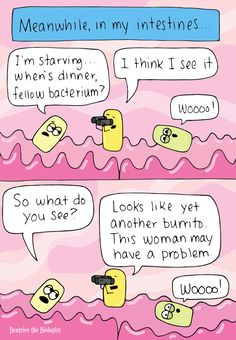 Beatrice the Biologist: In My Intestines