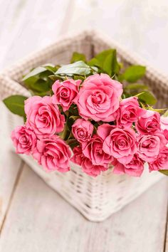 Pink rose wallpaper in hd for mobile Love Rose Flower, Hd Flowers, Rose Flower Wallpaper, Flower Backgrounds, Love Flowers, Beautiful Rose Photos, Beautiful Flowers Wallpapers, Beautiful Rose Flowers, Flower Images Free