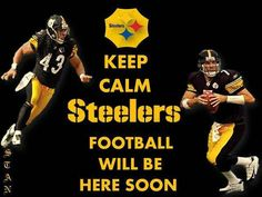 Pittsburgh Steelers ~Steeler Nation, not soon enough, its only january so we gotta wait til september