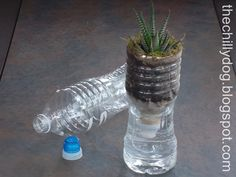 Do you just throw away plastic bottles knowing they're trash? Here is a list of ideas on how to reuse plastic bottles in the garden! Empty Plastic Bottles, Plastic Bottle Flowers, Recycled Bottles, Water Bottle Crafts, Plastic Bottle Crafts, Water Bottles, Bottled Water, Fused Plastic, Plastic Bags