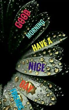 G Morning, Good Morning World, Good Morning Friends, Good Morning Messages, Good Morning Greetings, Morning Prayers, Morning Wish, Good Morning Images, Good Morning Quotes