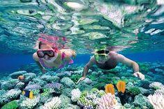 Best Catalina Island Snorkel Excursion from Punta Cana - TripAdvisor