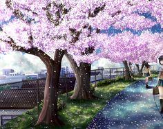 Resultado de imagen para arbol del cerezo