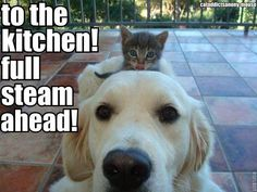 To the kitchen!