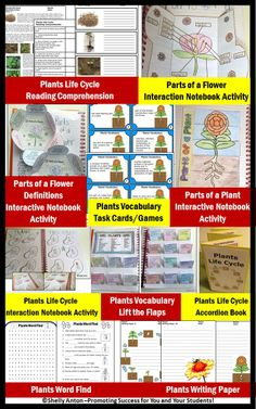 PLANTS BUNDLE AND SAVE!!!  In this bundle, you will find 10 plants resources for your classroom, including interactive notebook activities, puzzles, games, task cards, writing paper and more! This bundle is being offered for over 20% off than if purchased individually!