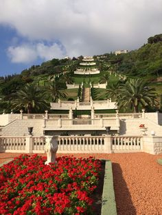 #Haifa #Israel Bahai Gardens  looking up the terraces on mount Carmel. #pureserenity