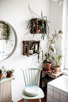 Plant Corner | Herz & Blut