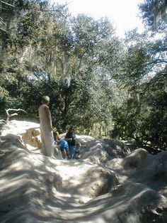 """Plant City: Medard Park- The only place in FL where you can """"climb a mountain"""" (the """"Sacred Hills""""), 50 ft+ that are remains from phosphate excavations. Also enjoy a 730 ft fishing pier/boardwalk bridging shores of the lake with a 15 ft observation tower in the end of the trail. There is a camping area near the lake. By the park at Turkey Creek Stables you can also rent a horse and take a trail ride in the park."""