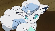 Favorite Pokemon requests are OPEN! Pokemon Gif, Pokemon Fusion, Chibi Pokemon, Ninetales Pokemon, Pokemon Card Memes, Alolan Vulpix, Type Pokemon, Pikachu, Images Kawaii