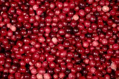 Cranberries | Last month, Michaela and I met up in Montreal … | Flickr