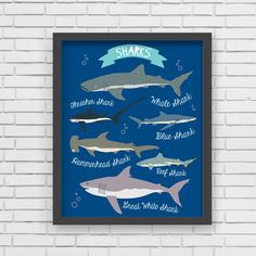 "For the little shark lover. How fun would this be for the little man in your life's bedroom? Dimensions & Details - 8""X10"" Made in the U.S. - Printed using recycled materials - Eco-friendly, soy-based"