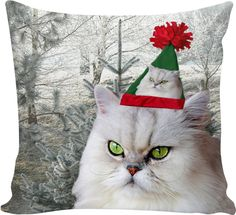 Check out my new product https://www.rageon.com/products/christmas-cat-couch-pillow on RageOn!