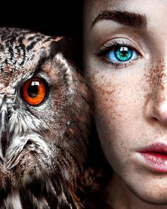 Claire Luxton Her Amazing Portraiture Fantasy Photography, Eye Photography, Animal Photography, Inspiring Photography, Gorgeous Eyes, Pretty Eyes, Image Avion, Foto Fantasy, The Pussycat