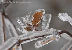 Krajiny - Zima (---)