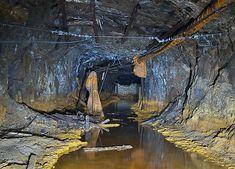 金色に輝く坑道