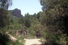 Ruta hacia el Barranc del Cint en territorio del Parque Natural Serra de Mariola. #Alcoy #Alcoi #RutasVerdes #naturaleza