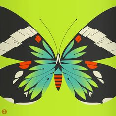 blue moth limited edition print green version by beethings on Etsy, $40.00