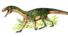 Recreación del aspecto de la especie Teleocrater rhadinus, antecesor de los dinosaurios
