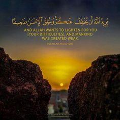 Beautiful Quran Verses, Allah, Wisdom, Passion, Massage, Book, Book Illustrations, Books, Massage Therapy