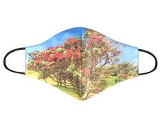"""COVID 19 """"Pōhutukawa Island"""" Face Masks Cellophane Bags, Gifts For Mum, One Size Fits All, Biodegradable Products, Face Masks, Hand Weaving, Moisturizer, Island, Boutique"""