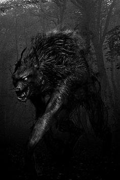 There's someone in the wolf Arte Horror, Horror Art, Dark Fantasy Art, Dark Art, Fenrir Tattoo, Wolf Hybrid, Beast, Werewolf Art, Howl At The Moon