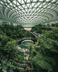 Gallery Of Sadie's Jewel Changi Airport Nears Completion Featuring The World's Tallest Indoor WaterFall , Changi Airport , Singapore Singapore Photos, Singapore Guide, Singapore City, Singapore Travel, Indoor Waterfall, Green Architecture, Contemporary Architecture, Travel Abroad, Land Scape