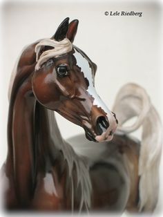 Lele Riedberg's collection of Stone Horse Arabians