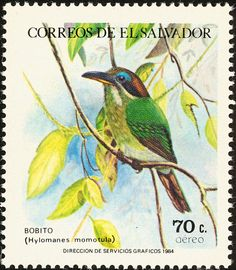 Tody Motmot stamps - mainly images - gallery format