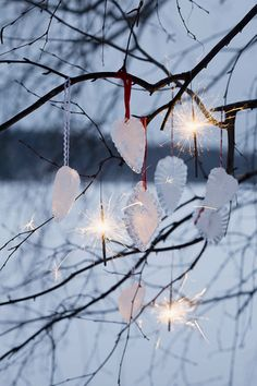winter in the garden - Ice Ornaments