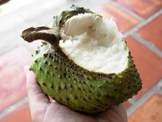 Soursop has been shown to serve as an alternative to chemotherapy for cancer patients.