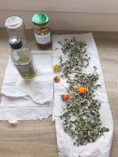 Study for your Bachelor of Naturopathic and Herbal Medicine at Wellpark College and learn skills that will enable you to improve the health and wellbeing of others. Naturopathy, Homeopathy, Health And Wellbeing, Herbal Medicine, Natural Health, Herbalism, College, Herbs, Study