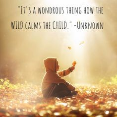 It's a wondrous thing how the wild calms the child. -Unknown Shout that from the rooftops and EXPLORE outside on this Friday! Love this inspiration from The Little Seeds Workshop page! It's a wondrous thing how the wild calms the child. Play Quotes, Mom Quotes, Quotes For Kids, Life Quotes, Quotes Children, Daughter Quotes, Family Quotes, Wild Child Quotes, Little Boy Quotes