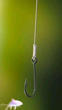 Survival Life Hacks, Survival Prepping, Survival Skills, Camping Survival, Fishing Hook Knots, Civil Engineering Design, Survival Knots, Knots Guide, Rope Knots