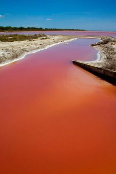 Blood Red Lake In South Of France Caused By High Salt Concentration (PICTURES) Lake Run, Red Lake, Belle France, Southern France, Rhone, French Beauty, Natural Phenomena, Provence, France Travel