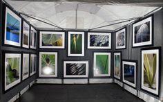 Pro Panels Light grey/ Oscar Matos Linares