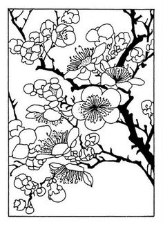 Cherry Blossom Coloring Page . Cherry Blossom Coloring Page . Japan Coloring Pages for Adults Coloring Cherry Blossom Flower Coloring Pages, Coloring Pages To Print, Colouring Pages, Printable Coloring Pages, Adult Coloring Pages, Coloring Books, Coloring Sheets, Cherry Blossom Drawing, Cherry Blossom Flowers