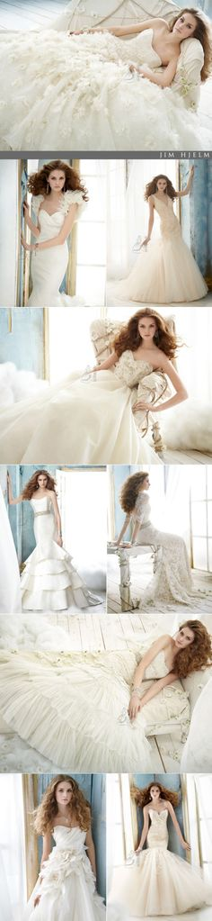 Read more about Jim Hjelm Spring 2012 Collection from Brides of North Texas, the premier wedding magazine and wedding vendor catalog in DFW. Wedding Vendors, Wedding Gowns, Wedding Ideas, Indoor Wedding, Happily Ever After, Getting Married, Groom, Bride, Spring