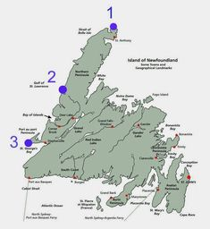 Island of Newfoundland - one of the clearest online maps I've found so far! Newfoundland Map, Newfoundland And Labrador, Voyage Usa, Bay And Bay, Bay Of Islands, Atlantic Canada, St Lawrence, Canada Travel, Empire