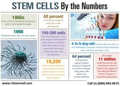Stem Cell at MAPS Pain Centers provides stem cell therapy for back and neck pain, arthritis, hip, knee, shoulder pain in Chicagoland. Cord Blood Banking, Stem Cell Research, Stem Cell Therapy, Wound Care, Bone Marrow, Pain Management, Neck Pain, Stem Cells, Medicine