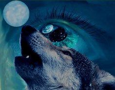 wolf moon shape-shifter