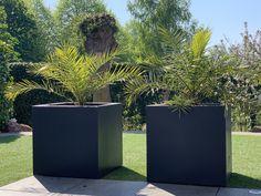 Plantenbakken Voor Buiten Groot.13 Beste Afbeeldingen Van Grote Plantenbakken In 2015 Buitentuinen