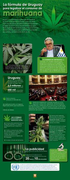 La fórmula de Uruguay para legalizar el consumo de marihuana