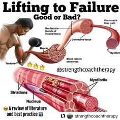 Lifting to failure is 100% not necessary for gainz and progress. If done too much, it can even hinder progress. For many novice lifters, going to failure is overused and overrated. Sorry bro, but you don't need to scour the gym looking for a spot for every bench press set. Just lift. For compound lifts, missing reps can be downright dangerous This is when training injuries happen. Going to failure is much safer when you are performing single joint exercises.