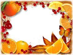 Красивая рамка для оформления фото в Фотошопе (с фруктами и ягодами, апельсин)