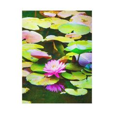 Pink waterlily with reflection and lilypads canvas print how to wear yoga pants to school, yoga outfit comfy, pink yoga pants #yogapants #yogalife #veganlifestyle, back to school, aesthetic wallpaper, y2k fashion Diy Yoga Clothes, Vacation Pictures, Water Lilies, Painted Signs, Beautiful Moments, Aesthetic Wallpapers, Painting Inspiration, Wrapped Canvas, Watercolor Paintings